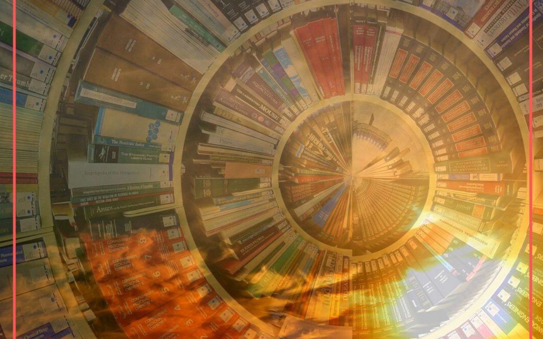 più libri più liberi horti di giano