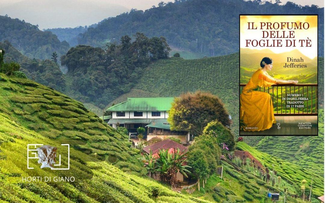Il profumo delle foglie di tè